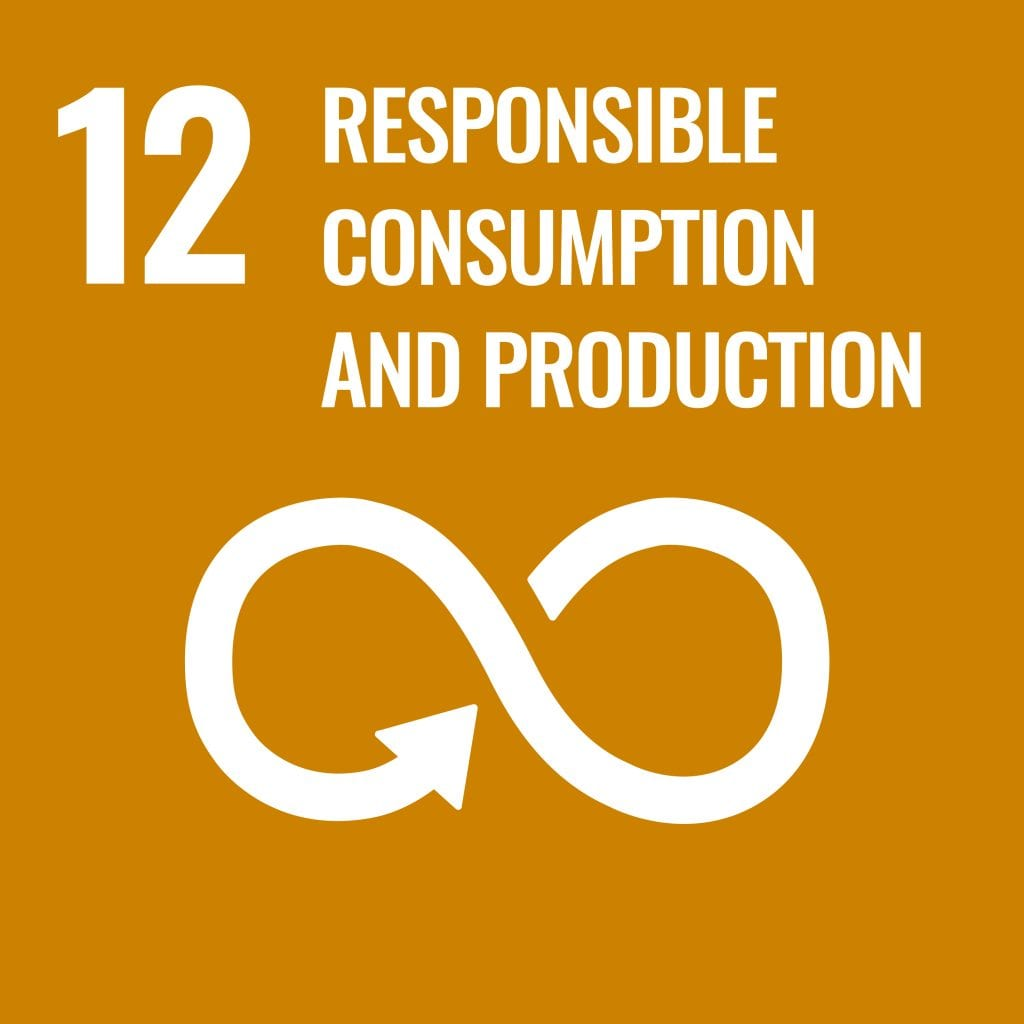 Forces of Responsible Consumption and Production -SDG 12